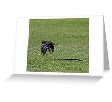 Crow Flapping Over a Grassy Sea Greeting Card