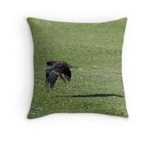 Crow Flapping Over a Grassy Sea Throw Pillow