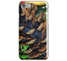 Fir Cone iPhone Case/Skin