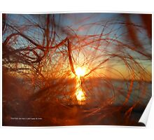 Sunset In My Hair | Pond Point, New York  Poster