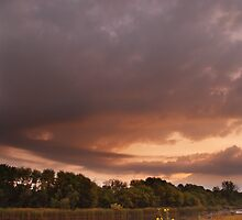 Prairie Morning by Adam Bykowski