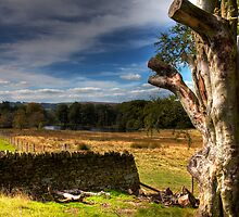 Peak District Longshaw Estate by Paul Thompson Photography