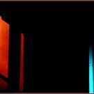 The Red Door by Wayne King