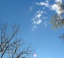 Tallahassee sky by RedLightRavine