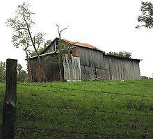 Barn on Hillside by boondocksaint