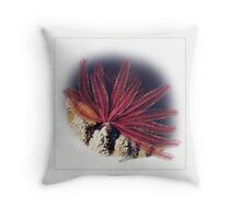 FEATHER STAR 3 Throw Pillow