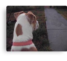 waiting for the school bus Canvas Print
