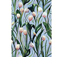 Waiting on the Blooming - a Tulip Pattern Photographic Print