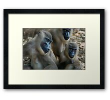 Three Drills Framed Print