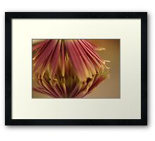 Multi- Colored Reflections Framed Print