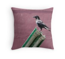 Crow Stands Above a Trashy Empire Throw Pillow