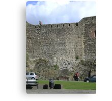 Don't shoot the tourists ...we need the money!! Canvas Print