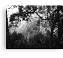 """Amongst the Trees"" Canvas Print"