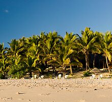 Matamanoa Island. by Michael Treloar