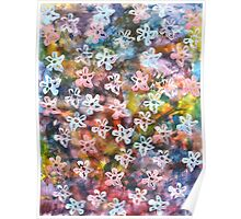 Night blooms in the garden Poster
