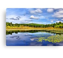 Down By the Pond Canvas Print
