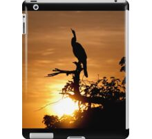Australian Darter at sunrise, Yellow Water, Kakadu National Park iPad Case/Skin