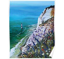 Wild Flowers at Beachy Head Poster