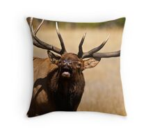 How Close Is Too Close? Throw Pillow