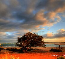 Windswept at Kalbarri, WA by Malcolm Katon