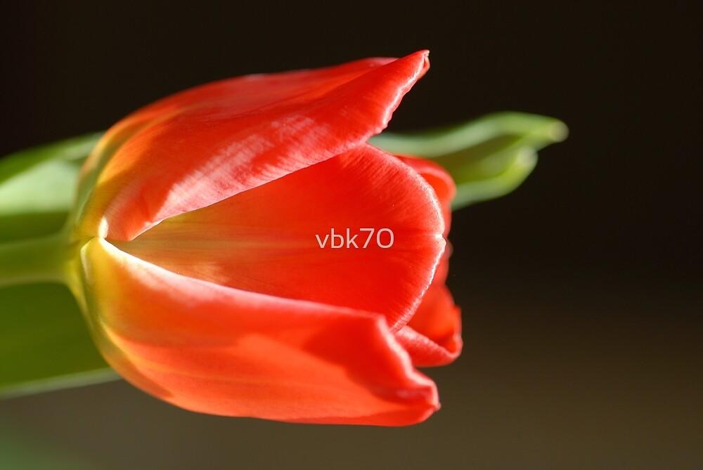 Grace by vbk70