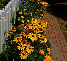 The Gardens Of Williamsburg ~ Part Three by artisandelimage