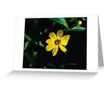 Morning collection Greeting Card