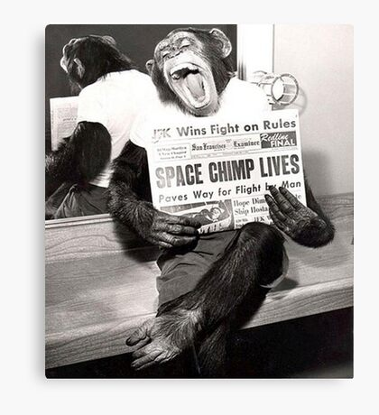 Space Chimp Canvas Print