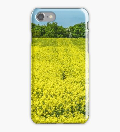Blue and Yellow iPhone Case/Skin
