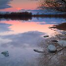 Lake Poaka by Paul Mercer