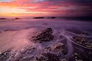 Ward beach 1 by Paul Mercer