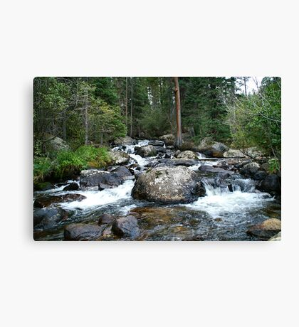 Roaring Stream in Rocky Mountain National Park Canvas Print