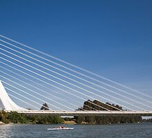 Alamillo Bridge, Sevilla, Spain by jmhdezhdez