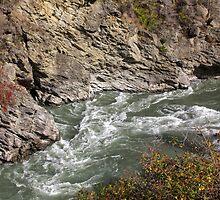 Kawarau River 1 by Charles Kosina
