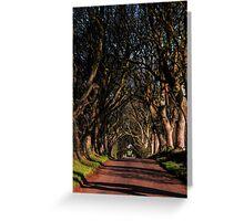 Dark Hedges Canopy Greeting Card
