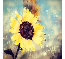 western country impressionism art watercolor sunflower Photographic Print