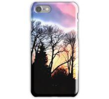 Dazzling Sunset iPhone Case/Skin