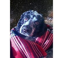 Dog in Space Photographic Print