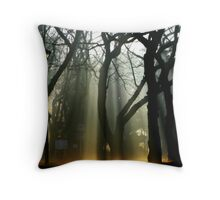 Lantern Waste Throw Pillow