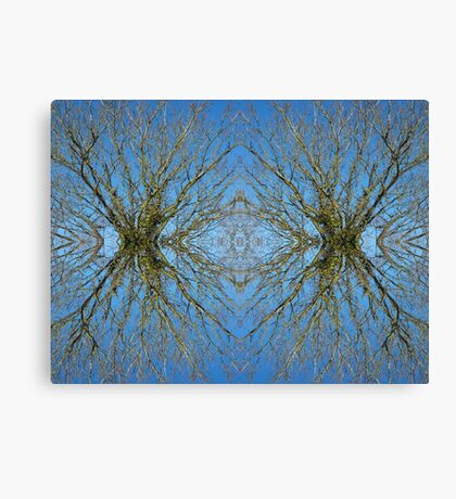 Nature of the Tree Canvas Print