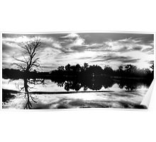 Black & White Reflections - Wonga Wetlands - The HDR Experience Poster