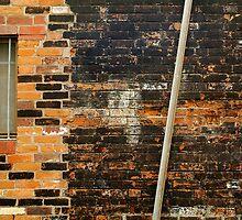 Back Alley by Joe Mortelliti
