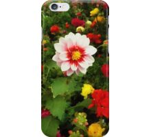Spring Patchwork iPhone Case/Skin