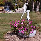 Old Hand Pump and Flowers by mltrue