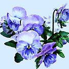 Group of Purple Pansies and Leaves by Susan Savad