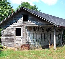 Halls Apple Farm by Judy Seltenright