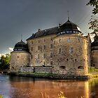 Örebro slottet 2 by Fadi  Barake