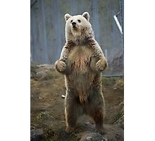 Adorbz Bear