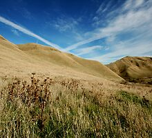 Over The Hills by Laurie Search