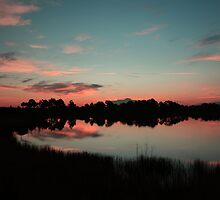 Dawns Early Light  by kathy s gillentine
